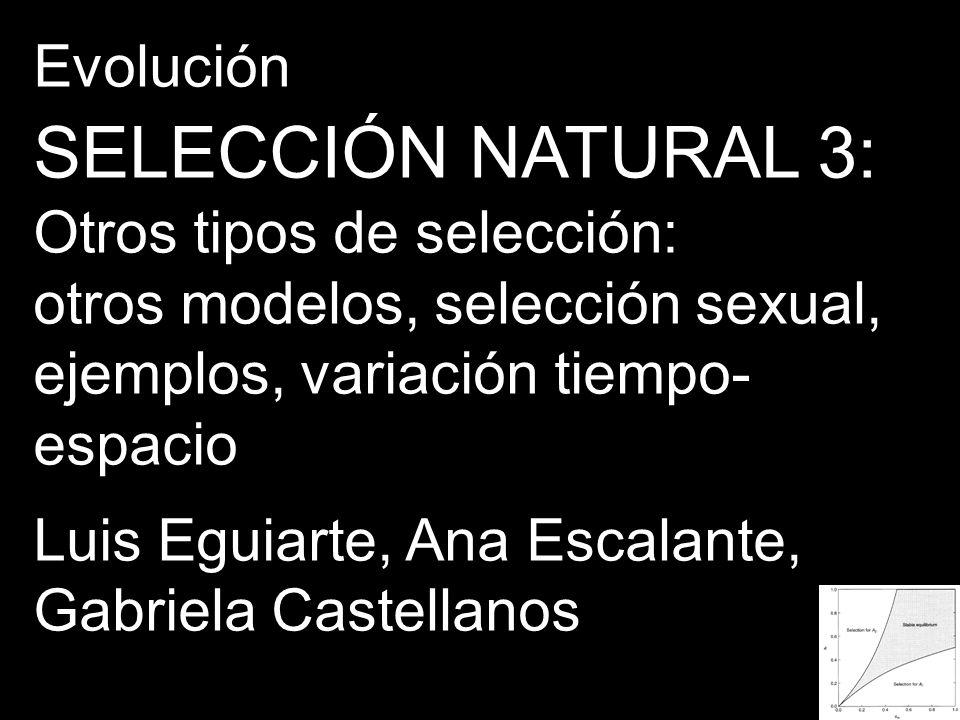 SELECCIÓN NATURAL 3: Evolución Otros tipos de selección: