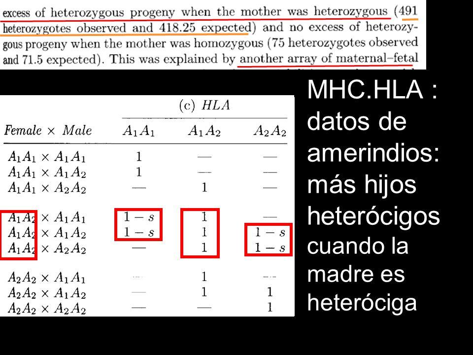 MHC.HLA : datos de amerindios: más hijos heterócigos