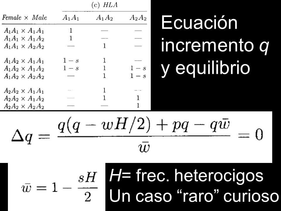 Ecuación incremento q y equilibrio H= frec. heterocigos