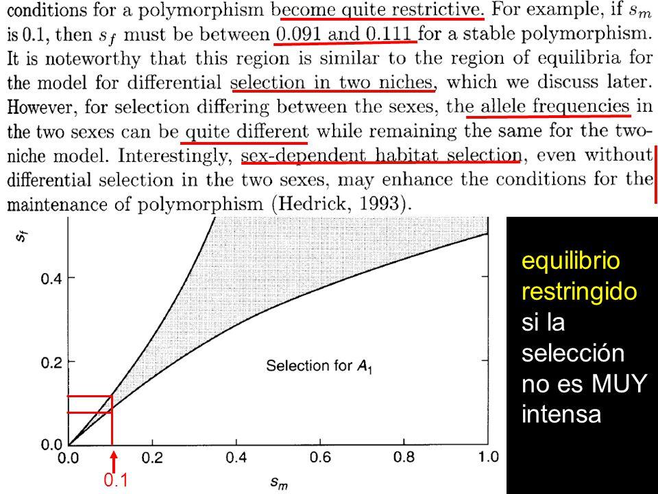 equilibrio restringido si la selección no es MUY intensa 0.1