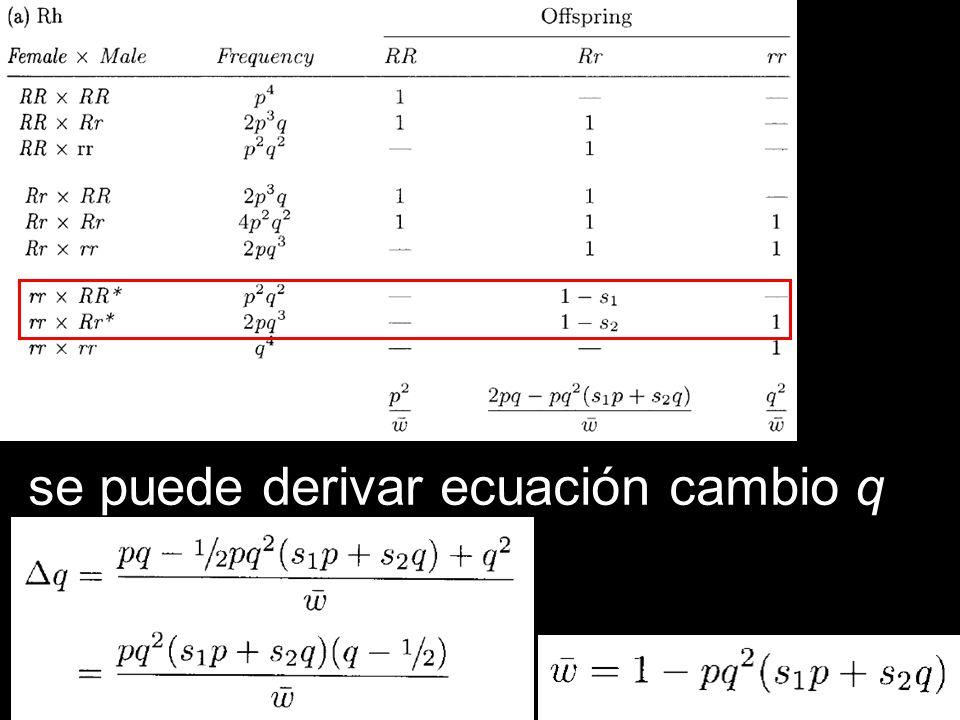 se puede derivar ecuación cambio q