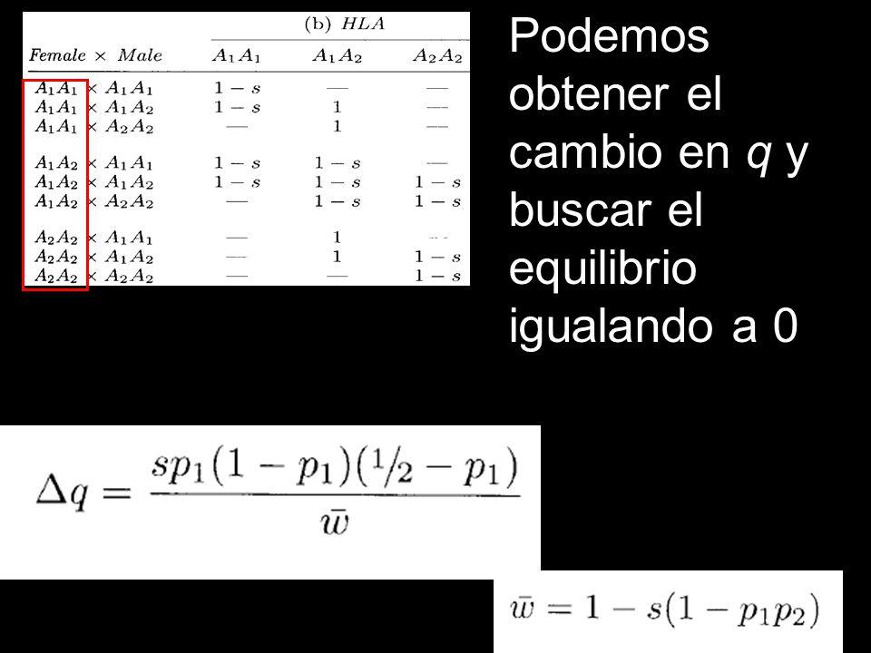 Podemos obtener el cambio en q y buscar el equilibrio igualando a 0