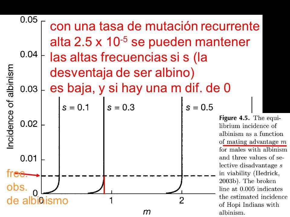con una tasa de mutación recurrente alta 2.5 x 10-5 se pueden mantener