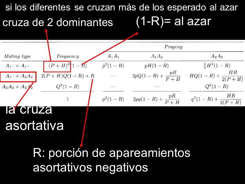 la cruza asortativa (1-R)= al azar R: porción de apareamientos