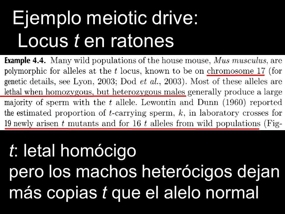 Ejemplo meiotic drive: Locus t en ratones
