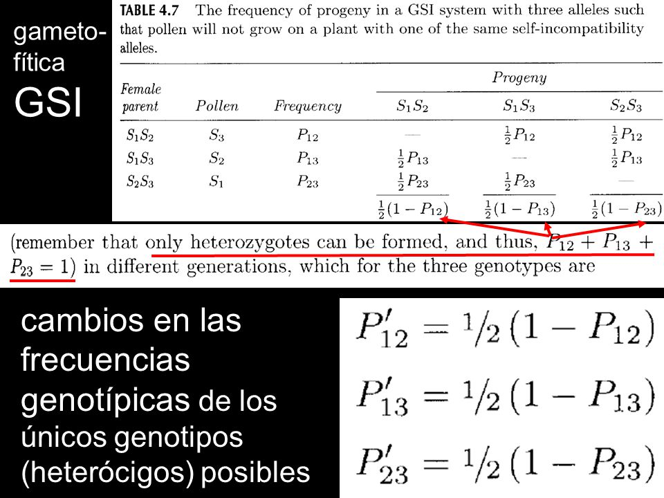 GSI cambios en las frecuencias genotípicas de los únicos genotipos