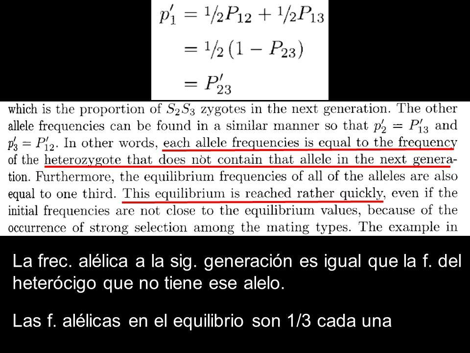 La frec. alélica a la sig. generación es igual que la f