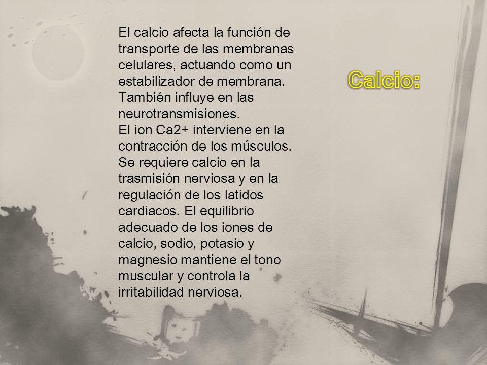 El calcio afecta la función de transporte de las membranas celulares, actuando como un estabilizador de membrana. También influye en las neurotransmisiones.