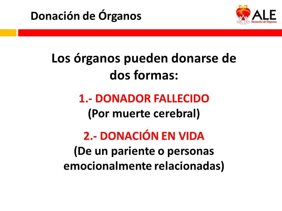 Los órganos pueden donarse de dos formas: