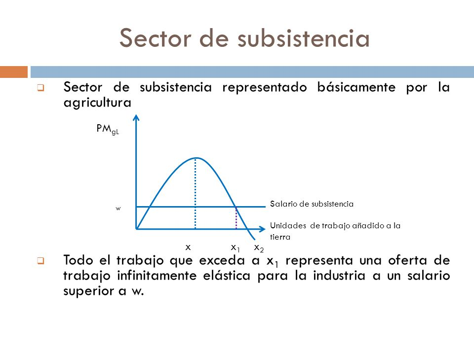 Sector de subsistencia