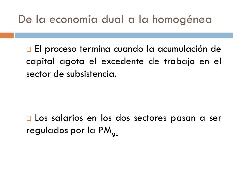 De la economía dual a la homogénea