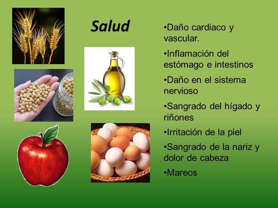 Salud Daño cardiaco y vascular. Inflamación del estómago e intestinos