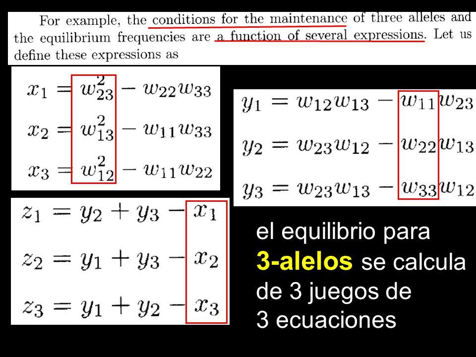 el equilibrio para 3-alelos se calcula de 3 juegos de 3 ecuaciones
