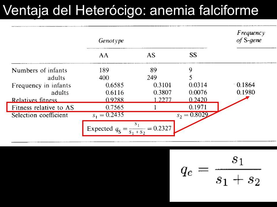 Ventaja del Heterócigo: anemia falciforme