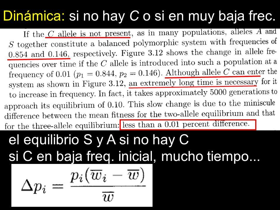 Dinámica: si no hay C o si en muy baja frec.
