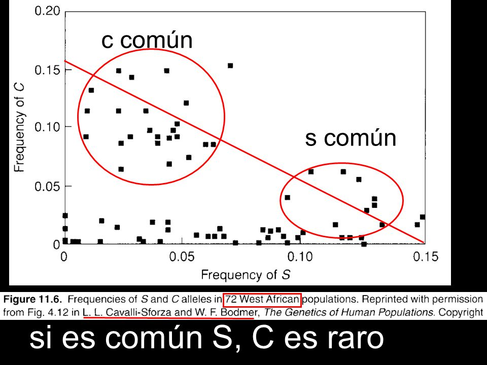 c común s común si es común S, C es raro