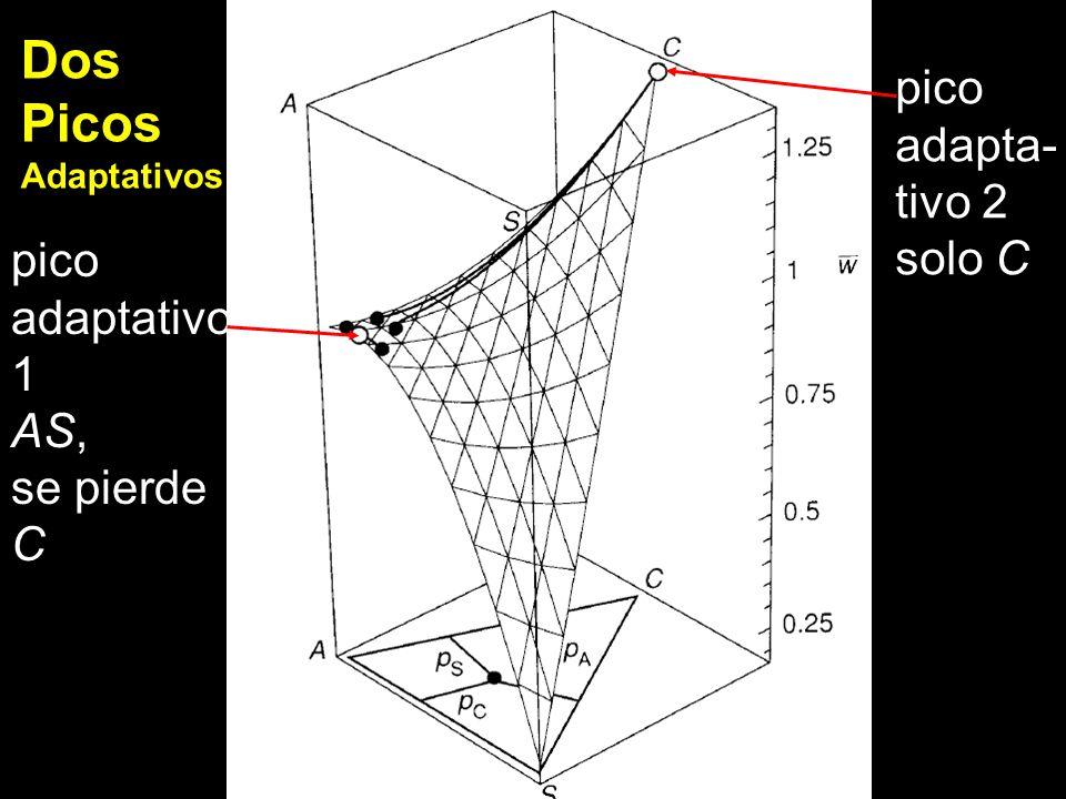 Dos Picos pico adapta- tivo 2 solo C pico adaptativo 1 AS, se pierde C