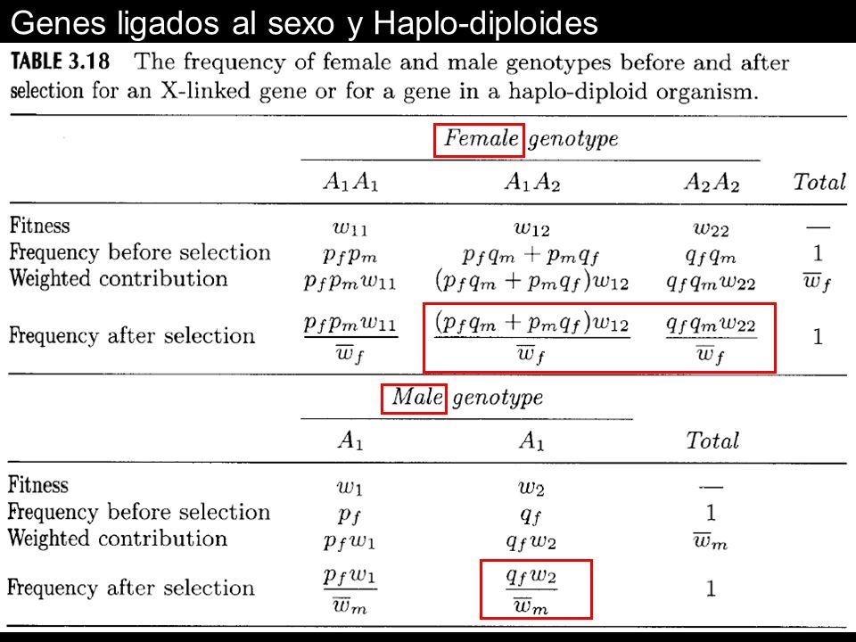 Genes ligados al sexo y Haplo-diploides