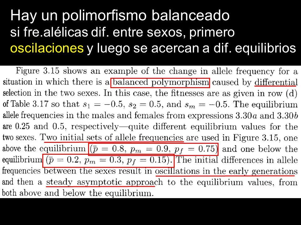 Hay un polimorfismo balanceado