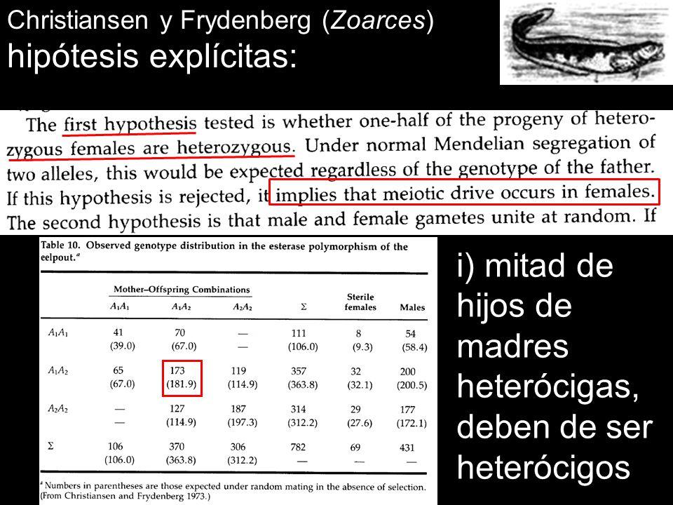 hipótesis explícitas: