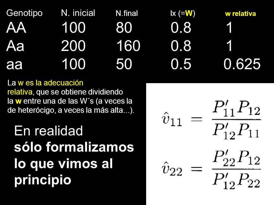 Genotipo N. inicial N.final lx (=W) w relativa