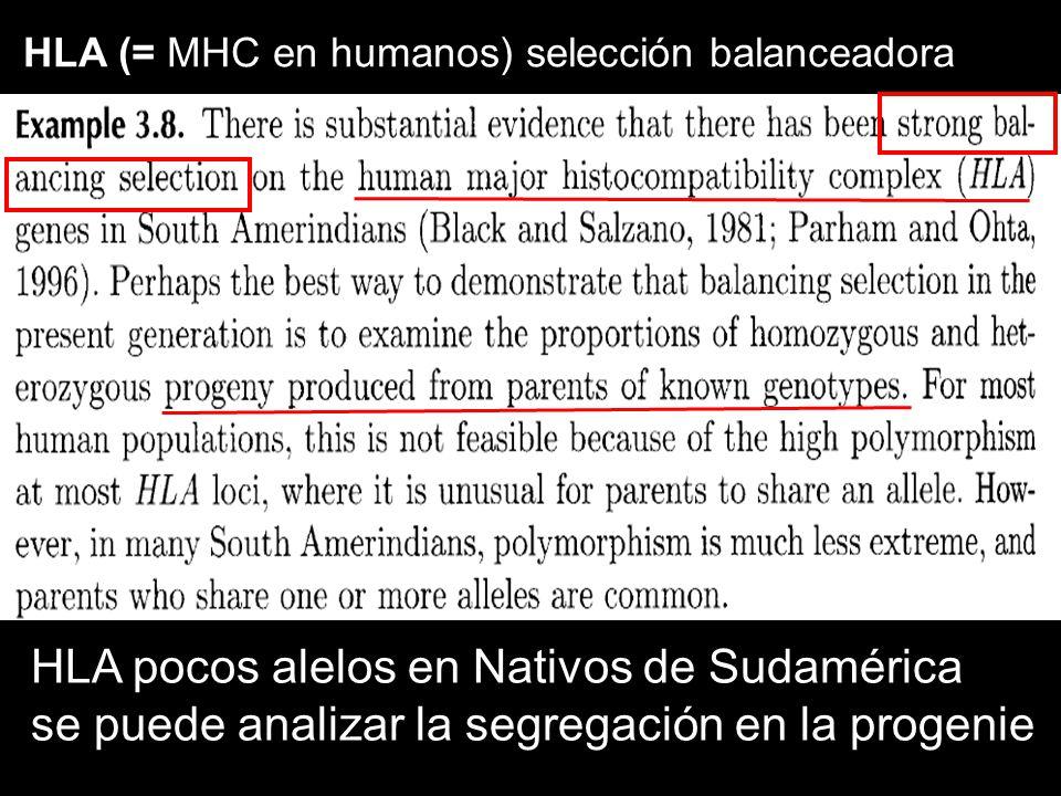 HLA pocos alelos en Nativos de Sudamérica