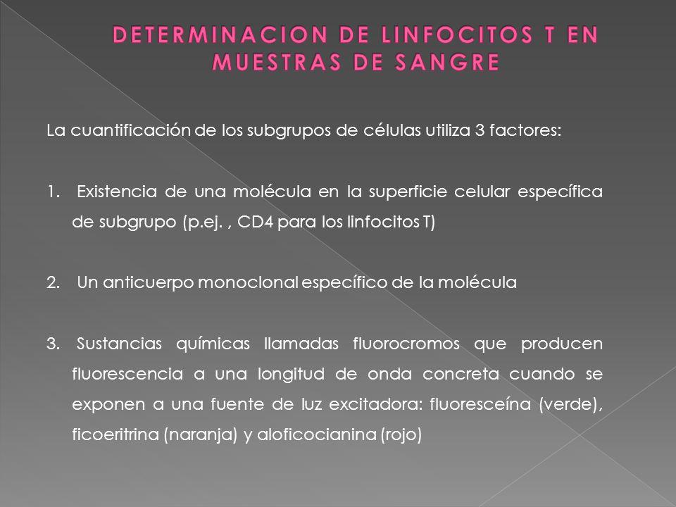 DETERMINACION DE LINFOCITOS T EN MUESTRAS DE SANGRE