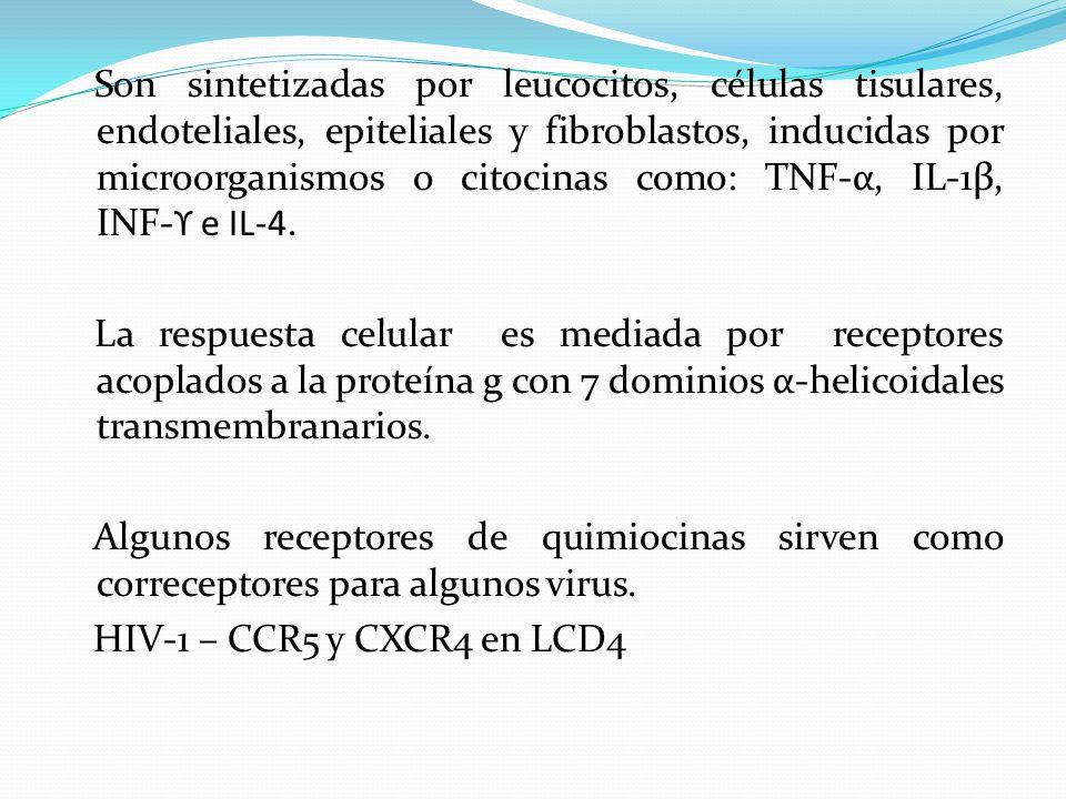 Son sintetizadas por leucocitos, células tisulares, endoteliales, epiteliales y fibroblastos, inducidas por microorganismos o citocinas como: TNF-α, IL-1β, INF-ϒ e IL-4.