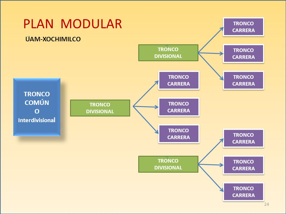 PLAN MODULAR UAM-XOCHIMILCO TRONCO COMÚN O Interdivisional TRONCO