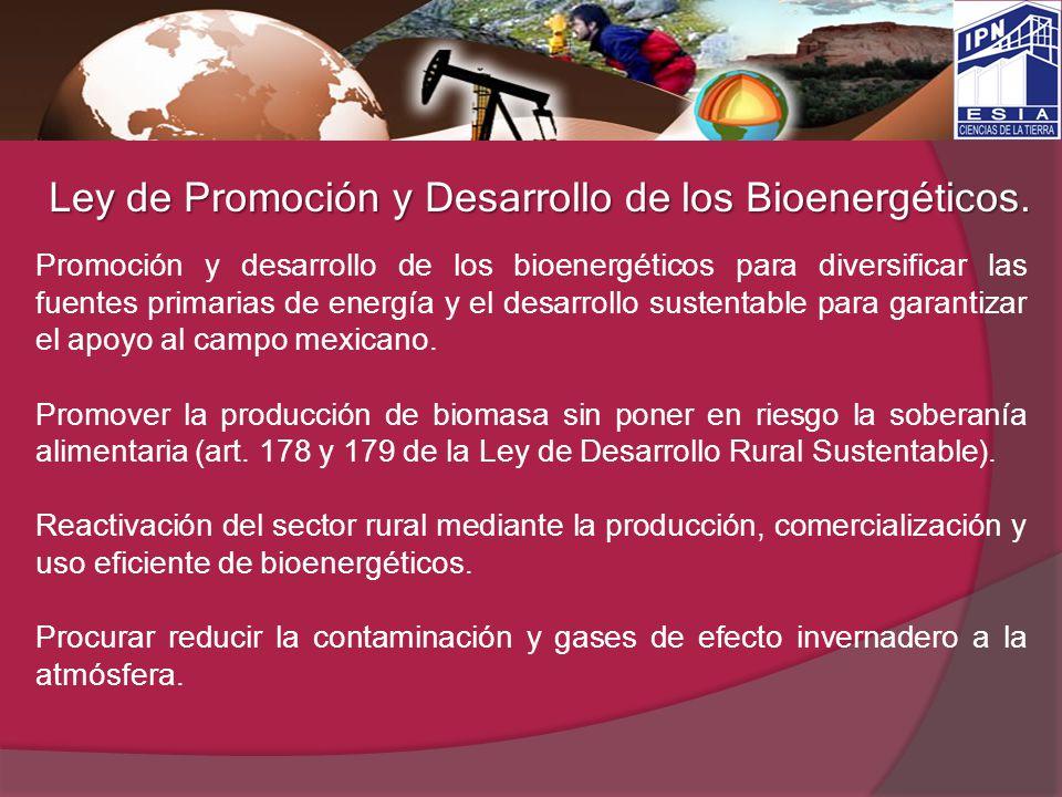 Ley de Promoción y Desarrollo de los Bioenergéticos.