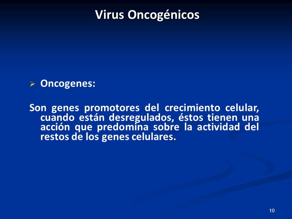 Virus Oncogénicos Oncogenes: