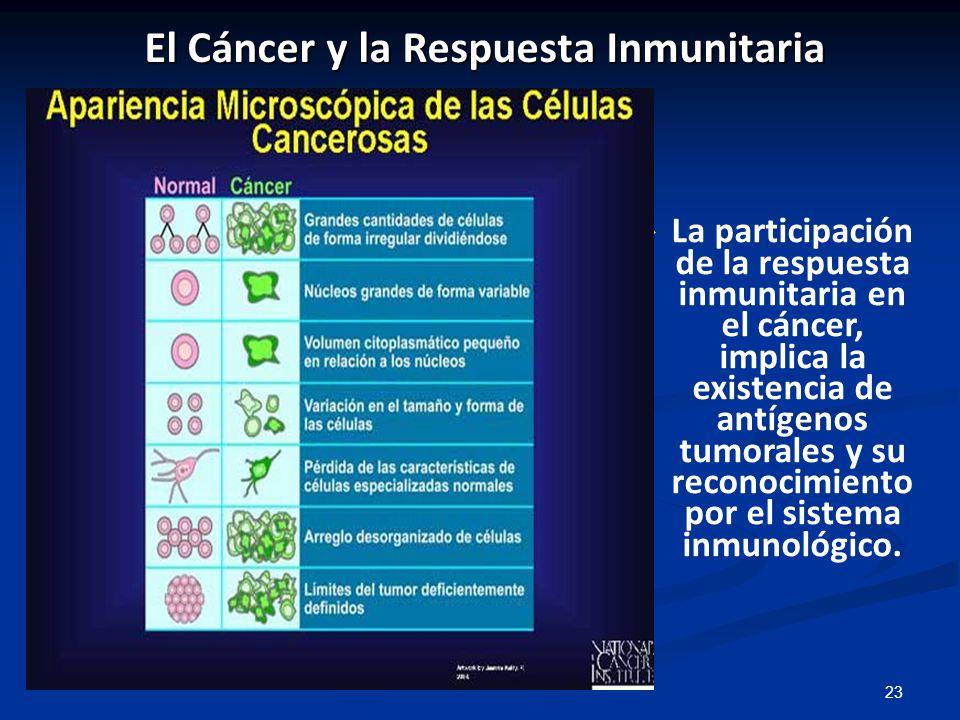 El Cáncer y la Respuesta Inmunitaria