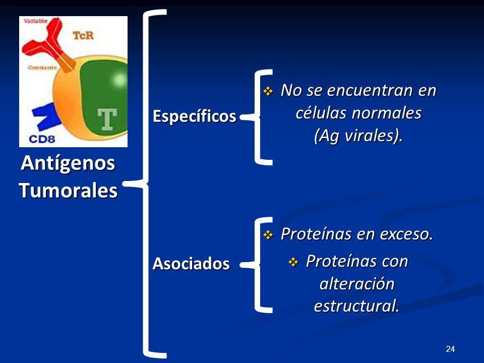 Antígenos Tumorales No se encuentran en células normales (Ag virales).