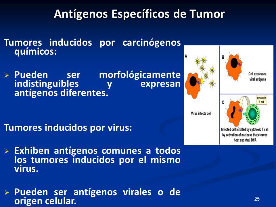 Antígenos Específicos de Tumor