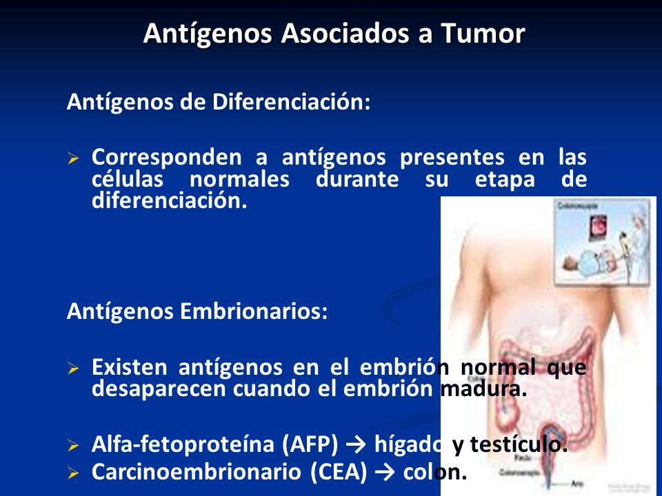 Antígenos Asociados a Tumor