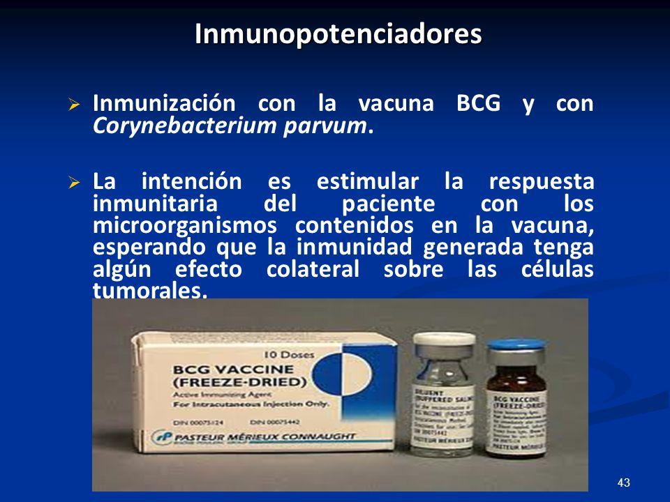 Inmunopotenciadores Inmunización con la vacuna BCG y con Corynebacterium parvum.