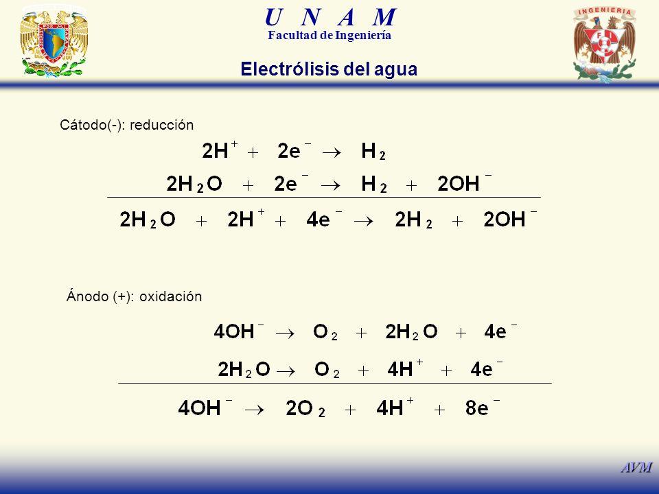 Electrólisis del agua Cátodo(-): reducción Ánodo (+): oxidación