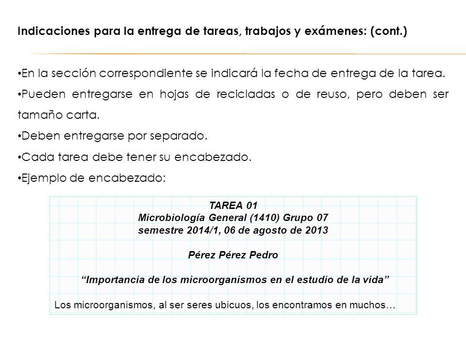 Indicaciones para la entrega de tareas, trabajos y exámenes: (cont.)