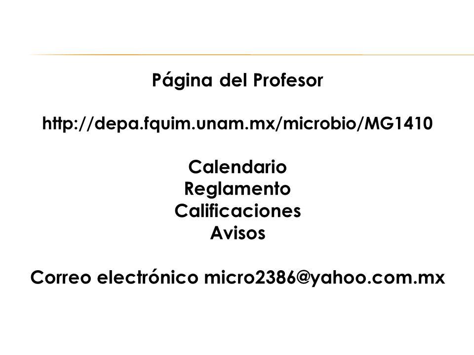 Correo electrónico micro2386@yahoo.com.mx