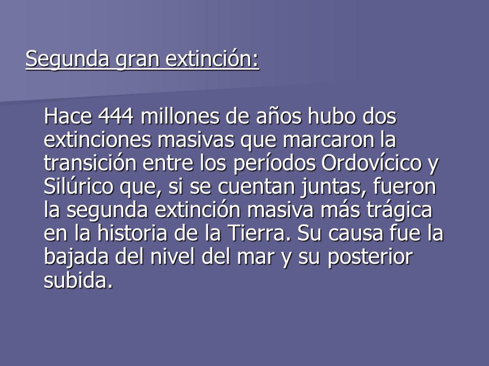 Segunda gran extinción: