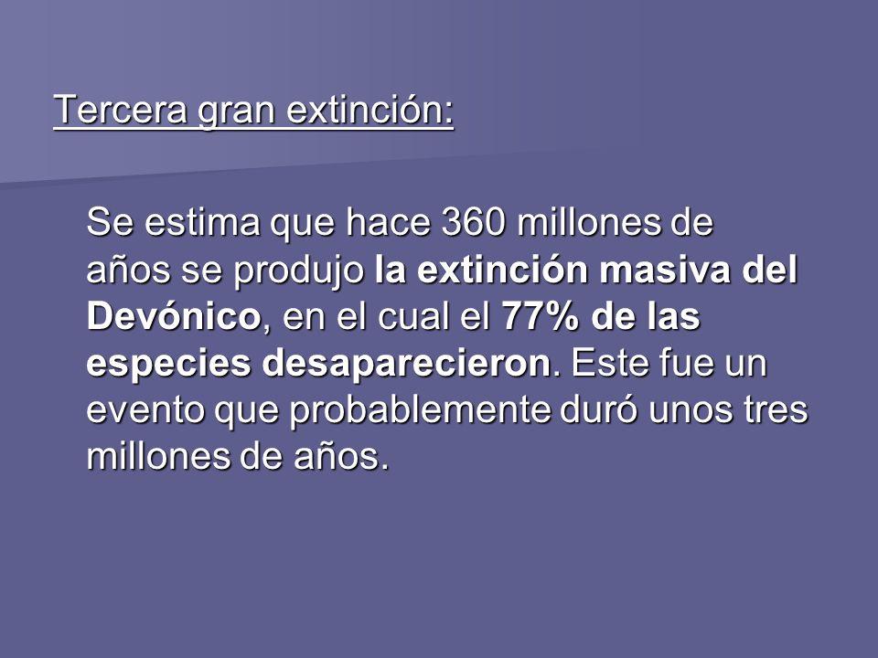 Tercera gran extinción: