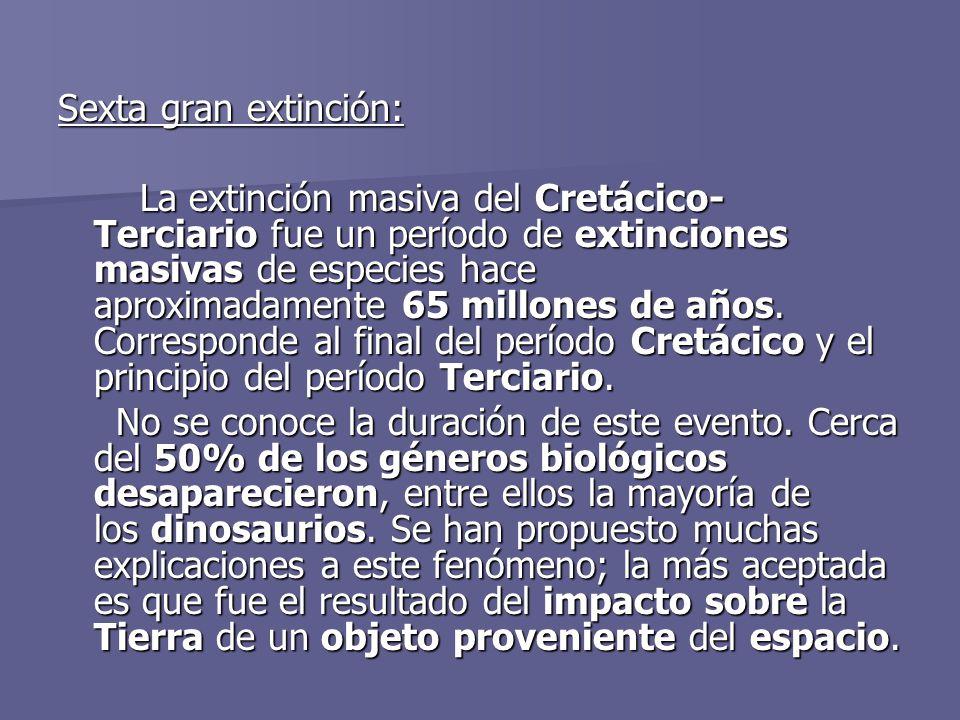 Sexta gran extinción:
