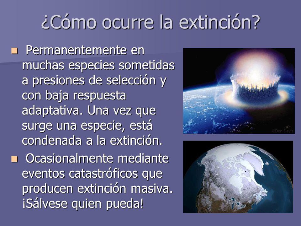 ¿Cómo ocurre la extinción