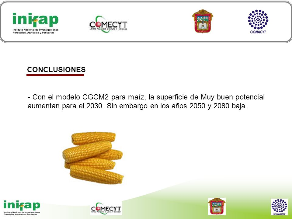 CONCLUSIONES - Con el modelo CGCM2 para maíz, la superficie de Muy buen potencial aumentan para el 2030.