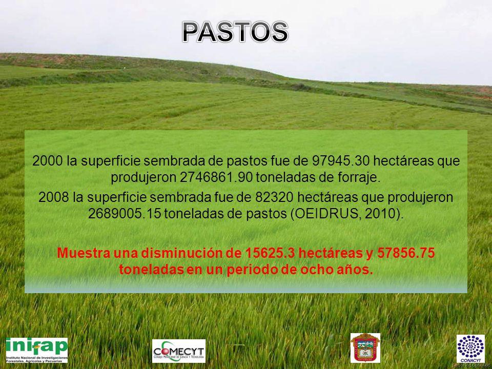 PASTOS 2000 la superficie sembrada de pastos fue de 97945.30 hectáreas que produjeron 2746861.90 toneladas de forraje.