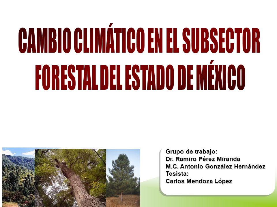 CAMBIO CLIMÁTICO EN EL SUBSECTOR FORESTAL DEL ESTADO DE MÉXICO