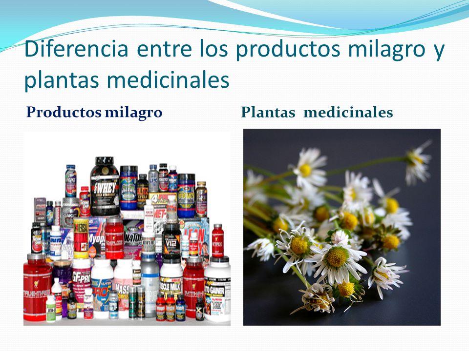 Diferencia entre los productos milagro y plantas medicinales