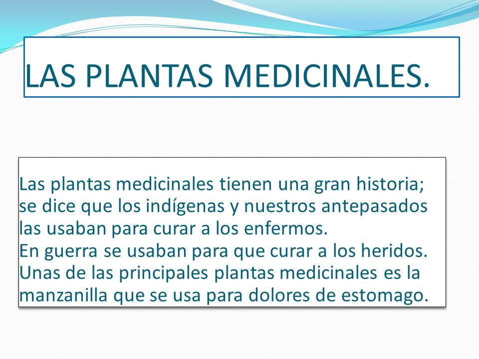 LAS PLANTAS MEDICINALES.