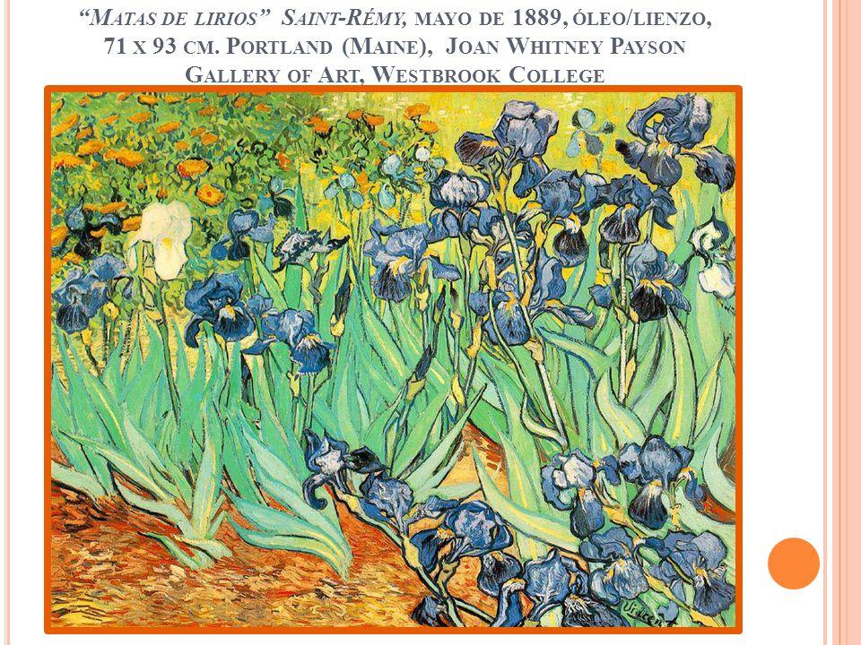 Matas de lirios Saint-Rémy, mayo de 1889, óleo/lienzo, 71 x 93 cm