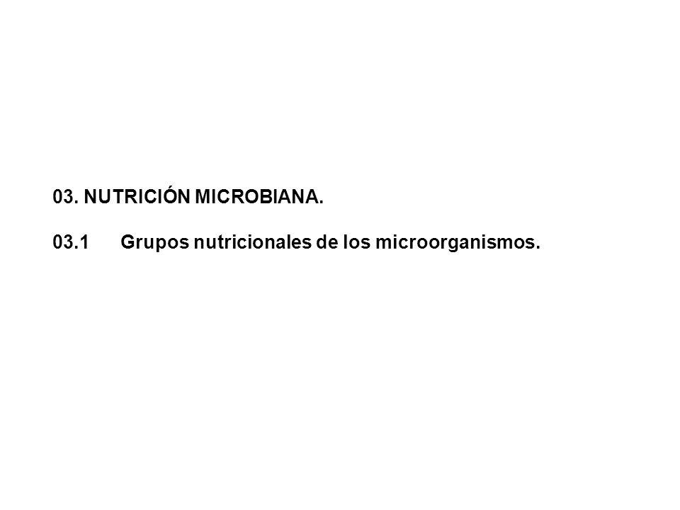 03. NUTRICIÓN MICROBIANA. 03.1 Grupos nutricionales de los microorganismos.